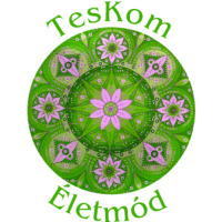 Massage, chiropractic, manual therapy – Teskom életmód